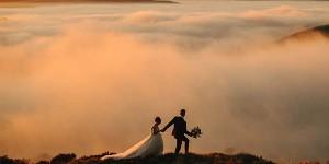 junebug wedding photographers